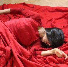 שפירית אדומה- מופע מפגש